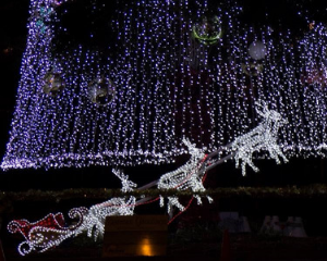Begin Your December with Christmas in Cooroy at Seachange Coolum